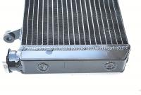 Ducati Monster S4R/S4RS Wasserkühler OEM Style   H2O
